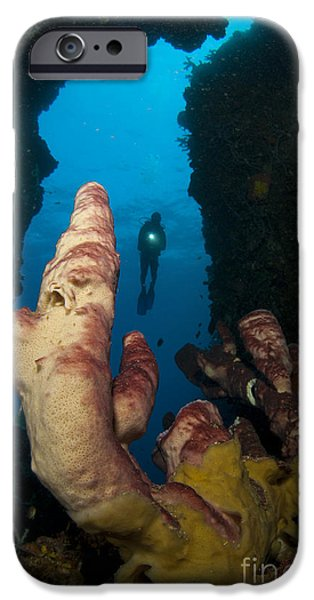 A Diver Looks Into A Cavern iPhone Case by Steve Jones