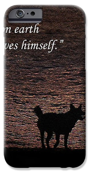 A Dog iPhone Case by Olahs Photography