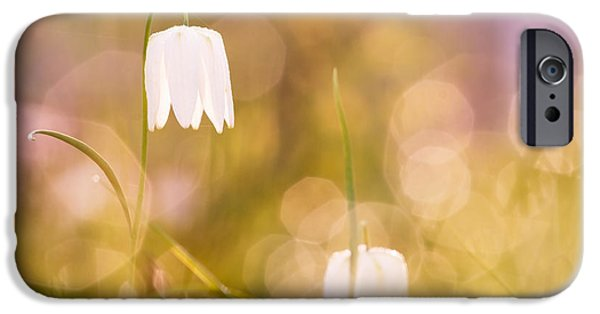 Meleagris iPhone Cases - A Fairies Place iPhone Case by Roeselien Raimond