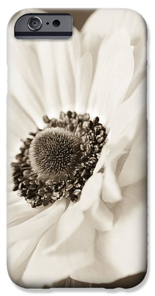 A Focus on the Details iPhone Case by Caitlyn  Grasso