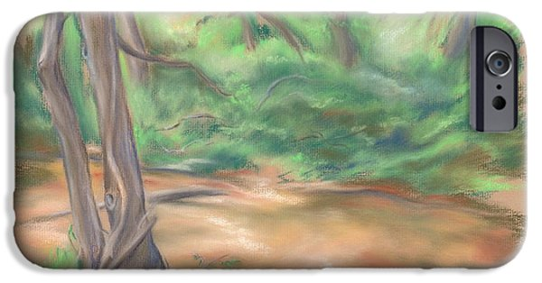 Creek Pastels iPhone Cases - A Forest Brook iPhone Case by MM Anderson