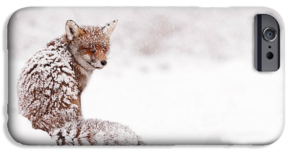 Winter Scene iPhone Cases - A Fox Fantasy iPhone Case by Roeselien Raimond
