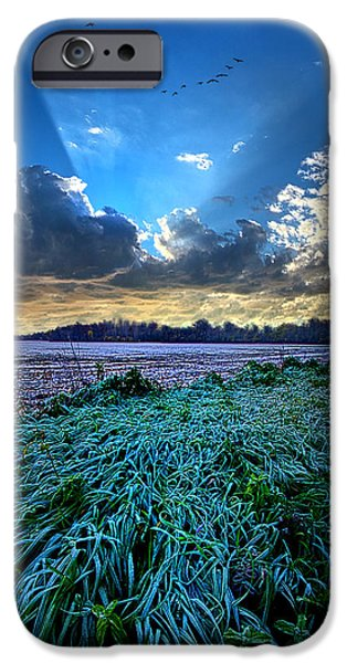 Frost Photographs iPhone Cases - A Frosty Morning iPhone Case by Phil Koch