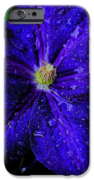 A Gentle Rain iPhone Case by Frozen in Time Fine Art Photography