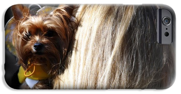 Yorkshire Terrier Art iPhone Cases - A Girl And Her Dog iPhone Case by Steven  Digman