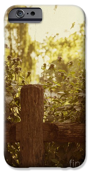 Old Fence Posts iPhone Cases - A Good Morning iPhone Case by Margie Hurwich