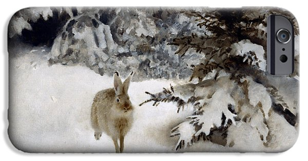 Wild Animals iPhone Cases - A Hare in the Snow iPhone Case by Bruno Andreas Liljefors