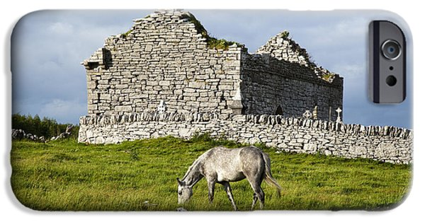 Headstones iPhone Cases - A Horse Grazing In A Field iPhone Case by Peter Zoeller
