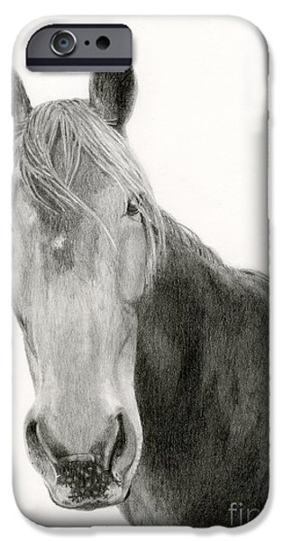 Agriculture Drawings iPhone Cases - A Horse Of Course iPhone Case by Sarah Batalka