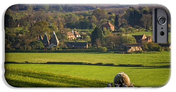 Sheep iPhone Cases - A Kentish View iPhone Case by Ian Hufton