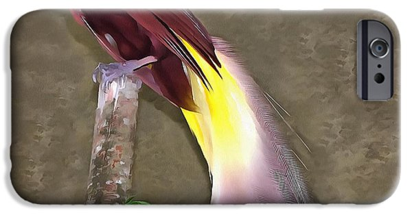 Birds iPhone Cases - A large bird of paradise iPhone Case by Sergey Lukashin
