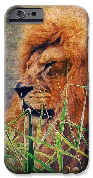 Lion iPhone Cases - A Lion Portrait iPhone Case by Angela Doelling AD DESIGN Photo and PhotoArt