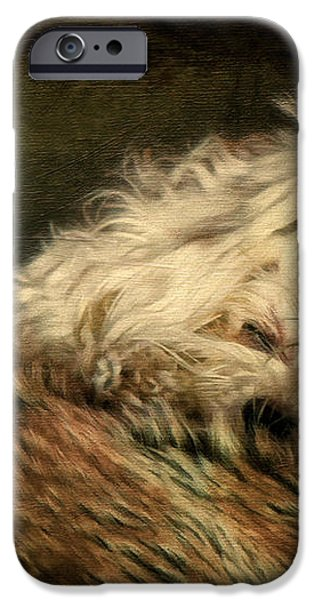 A Long Winter's Nap iPhone Case by Lois Bryan