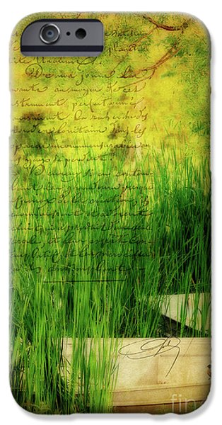 A Love Letter From Summer iPhone Case by Lois Bryan