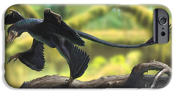 Concentration Digital iPhone Cases - A Microraptor Perched On A Tree Branch iPhone Case by Sergey Krasovskiy