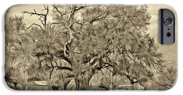 Oak Alley Plantation iPhone Cases - A Mighty Oak - Paint sepia iPhone Case by Steve Harrington
