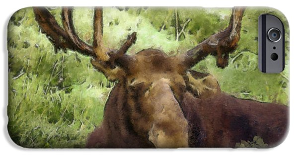 Bull Moose iPhone Cases - A Moose Abstract iPhone Case by Ernie Echols