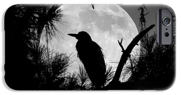 Eerie iPhone Cases - A Night Herons Night Watch iPhone Case by Jamie Anderson