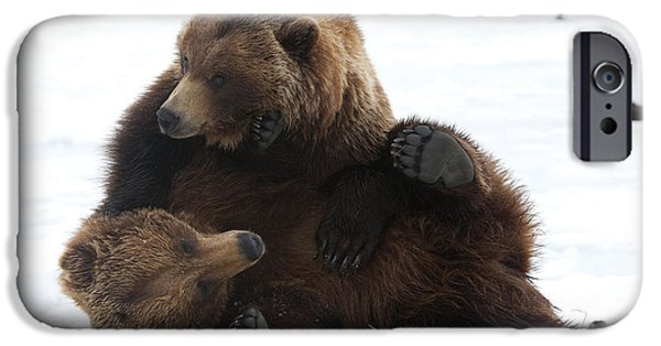 Wrestle iPhone Cases - A Pair Of Adult Brown Bears Wrestle iPhone Case by Doug Lindstrand