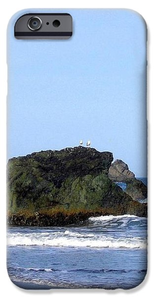 A Pair Of Seagulls On A Rock iPhone Case by Will Borden