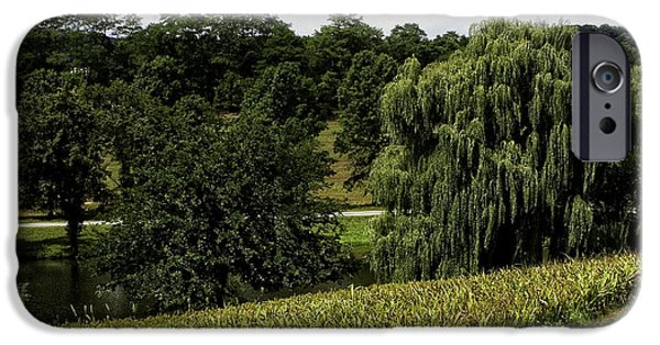 Weeping Willow Tree iPhone Cases - A Peaceful Place iPhone Case by Madeline Ellis