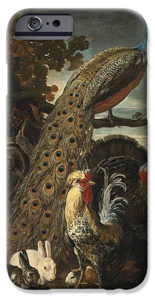 David Drawings iPhone Cases - A Peacock Turkey Rabbits And Cockerel In A Landscape iPhone Case by David De Coninck