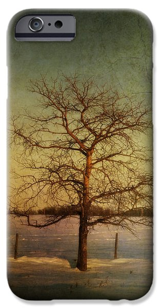 A Pictorialist Photograph Of A Lone iPhone Case by Roberta Murray