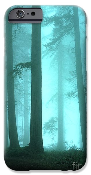 Canadian Photographer iPhone Cases - A Place Of Awe iPhone Case by Bob Christopher