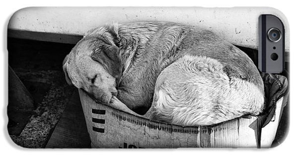Sleeping Places iPhone Cases - A Place to Sleep iPhone Case by John Rizzuto