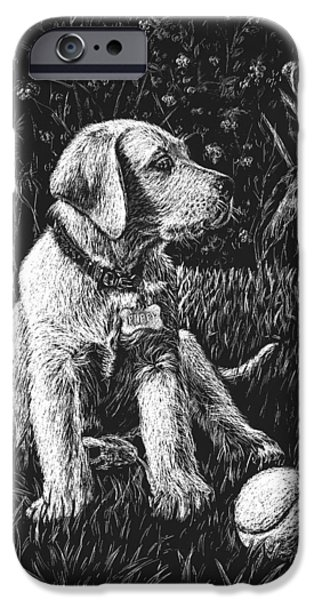 Labrador Puppy iPhone Cases - A Puppy With The Ball iPhone Case by Irina Sztukowski