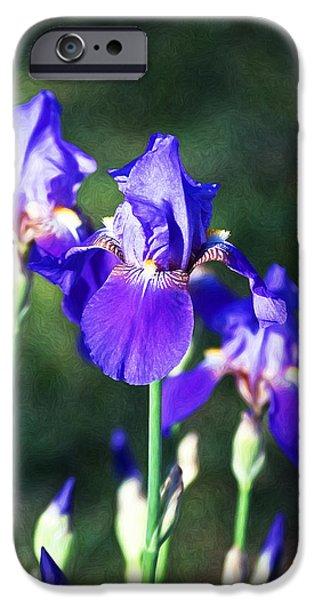 Love Asheville iPhone Cases - A Purple Iris Family iPhone Case by John Haldane