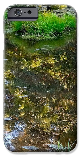 A Quiet Little Pond iPhone Case by Ira Shander