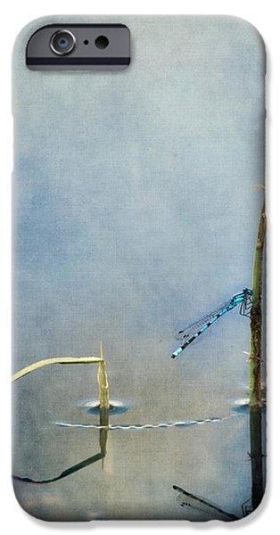 a quiet moment iPhone Case by Priska Wettstein