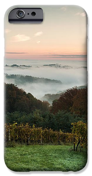 A quiet morning on the hill iPhone Case by Davorin Mance
