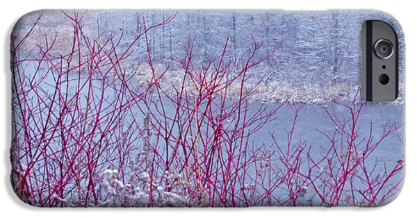 Best Sellers -  - Red Barn In Winter iPhone Cases - A Railroad iPhone Case by Jack Zievis