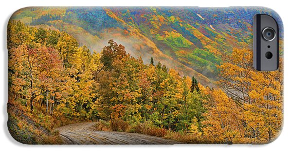 Fall iPhone Cases - A Rainy Autumn Morning 2  iPhone Case by Allen Beatty