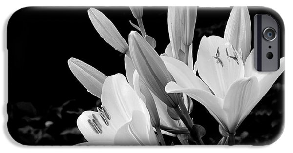 Asiatic Lily iPhone Cases - A Refreshing Morning iPhone Case by Michael Eingle