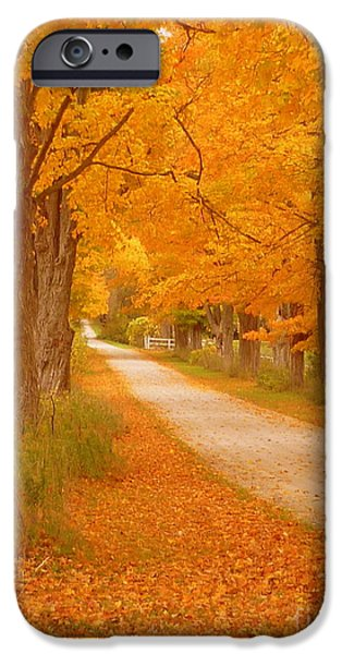 A Romantic Country Walk In The Fall iPhone Case by Lingfai Leung
