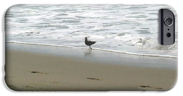 Ocean Pyrography iPhone Cases - A seagull playing with waves iPhone Case by Hiroko Sakai