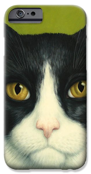 A Serious Cat iPhone Case by James W Johnson