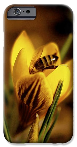 Spring Flowers iPhone Cases - A Sign of Spring iPhone Case by Rona Black