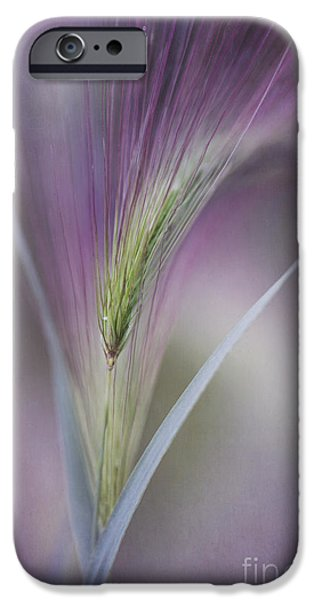 Texture iPhone Cases - A Single Whisper iPhone Case by Priska Wettstein