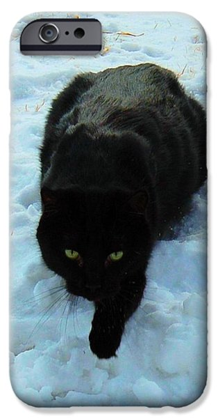 A small Panther in the Snow iPhone Case by Cheryl Poland
