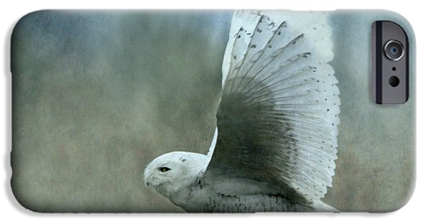 Flight iPhone Cases - A Snowy Flight iPhone Case by Angie Vogel