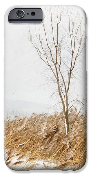 Wintertime iPhone Cases - A snowy winter country scene/ digital painting iPhone Case by Sandra Cunningham