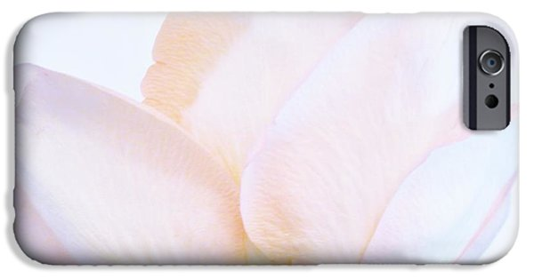 Wrap Digital Art iPhone Cases - A Soft Rose iPhone Case by Marsha Heiken