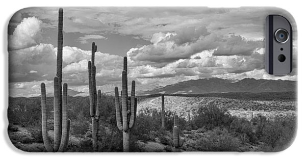 Rainy Day iPhone Cases - A Sonoran Winter Day in Black and White  iPhone Case by Saija  Lehtonen