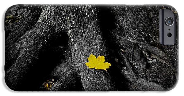 Wood Digital Art iPhone Cases - A spark of color iPhone Case by Nicklas Gustafsson