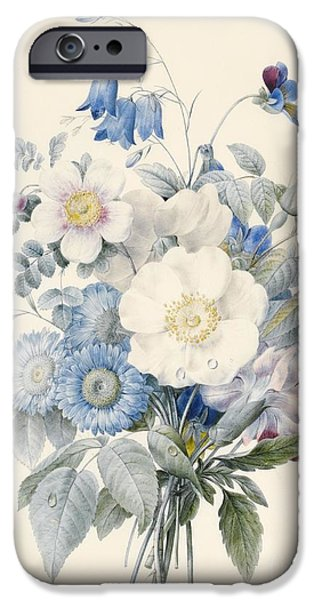 Flora Drawings iPhone Cases - A Spray of Summer Flowers iPhone Case by Louise D Orleans