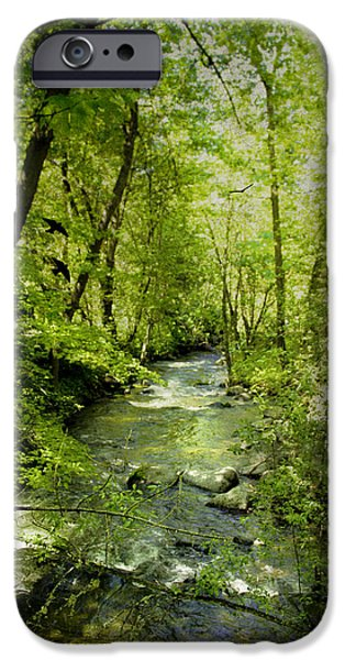 Dappled Light Photographs iPhone Cases - A Spring Day At Lithia Creek iPhone Case by Diane Schuster